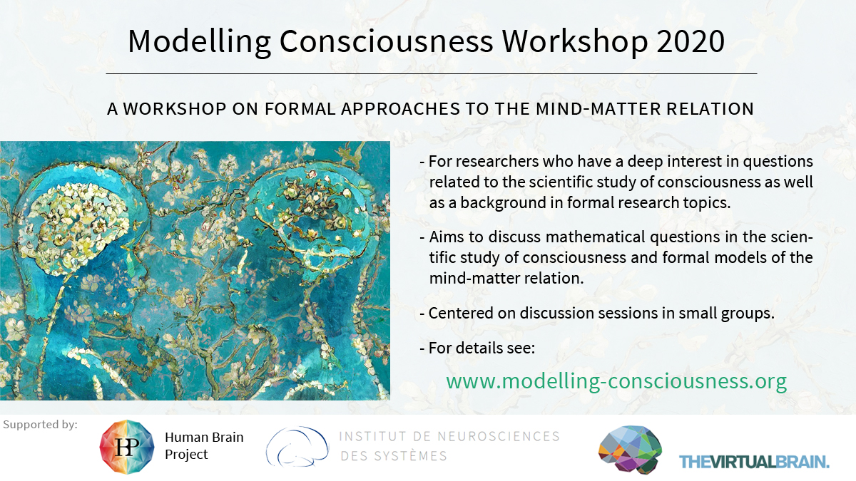 Modelling-Consciousness-Workshop-2020